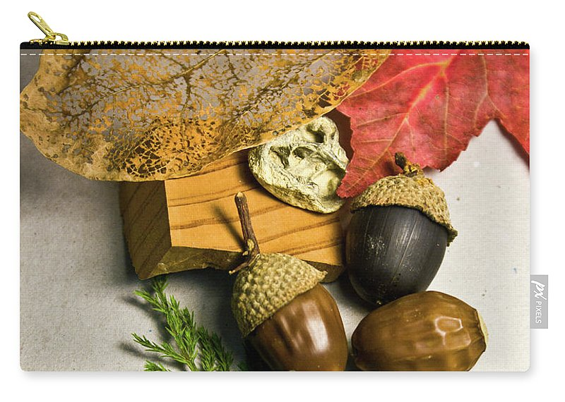 Skeletonized Carry-all Pouch featuring the photograph Fall Arrangement by Douglas Barnett