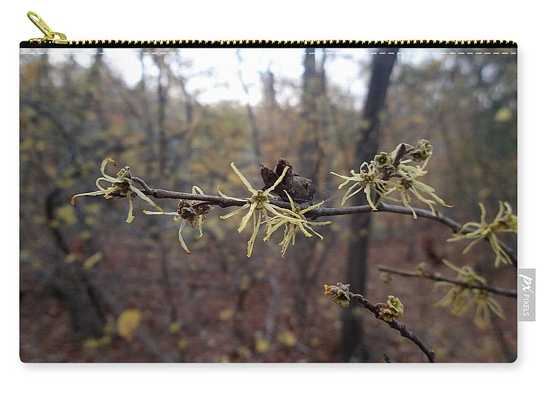 Witch Hazel Carry-all Pouch featuring the photograph Flower In The Woods by Robert Nickologianis