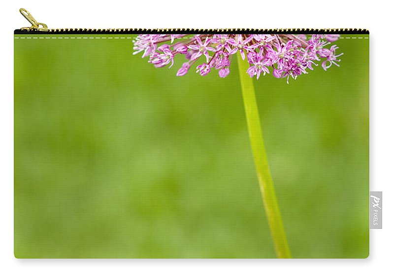 Flower Carry-all Pouch featuring the photograph Flower by Sebastian Musial