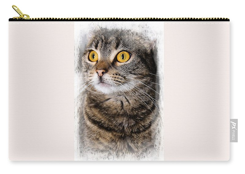 Cat Carry-all Pouch featuring the photograph Goldeneye by Joyce Baldassarre