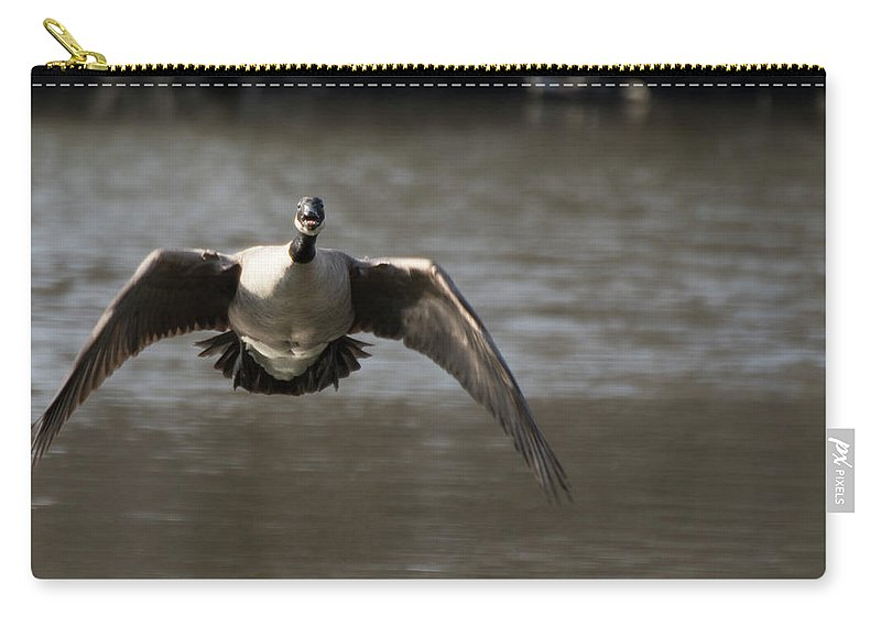 Goose Carry-all Pouch featuring the photograph Goose In Flight by Kathy Gallow