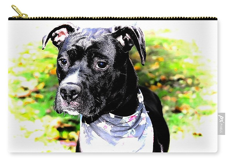 Pit Bull Terrier Carry-all Pouch featuring the photograph Gorgeous by Joyce Baldassarre