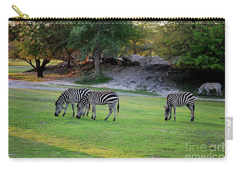 Grazing Carry-all Pouch featuring the photograph Grazing by Robert Meanor