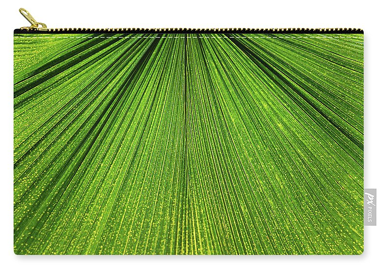 Arecaceae Carry-all Pouch featuring the photograph Green Lines by Monika Tymanowska