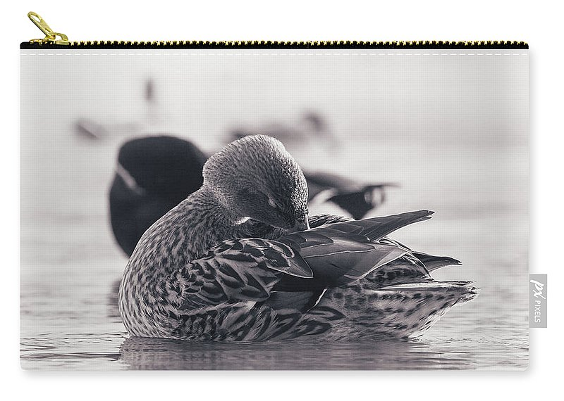 Duck Carry-all Pouch featuring the photograph Grooming by Annette Bush