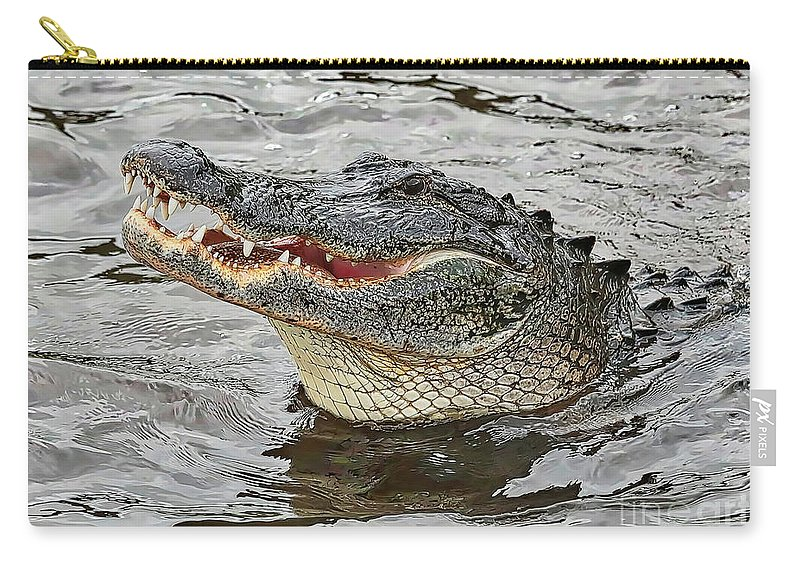 Gator Carry-all Pouch featuring the photograph Happy Florida Gator by Carol Groenen