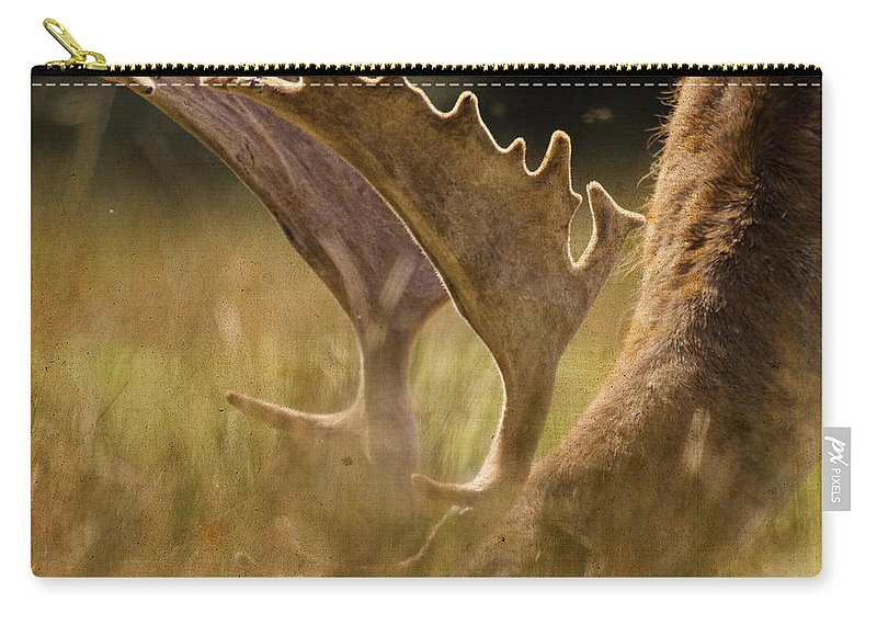 Fallow Deer Carry-all Pouch featuring the photograph Having A Lunch by Angel Ciesniarska