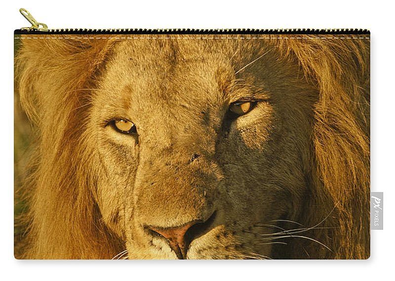 Lion Carry-all Pouch featuring the photograph His Majesty by Michele Burgess