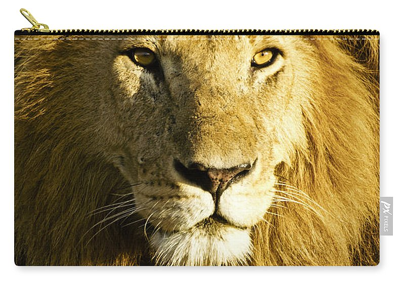 Lion Carry-all Pouch featuring the photograph His Royal Highness by Michele Burgess