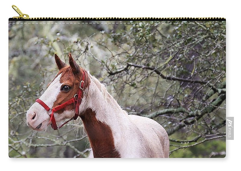 Carry-all Pouch featuring the photograph Horse 019 by Jeff Downs