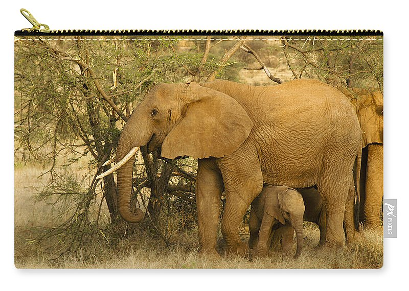Africa Carry-all Pouch featuring the photograph I Love My Big Mama by Michele Burgess