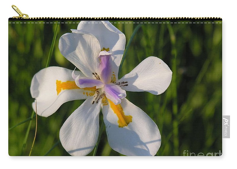 Lilly Carry-all Pouch featuring the photograph Iris by Diane Greco-Lesser