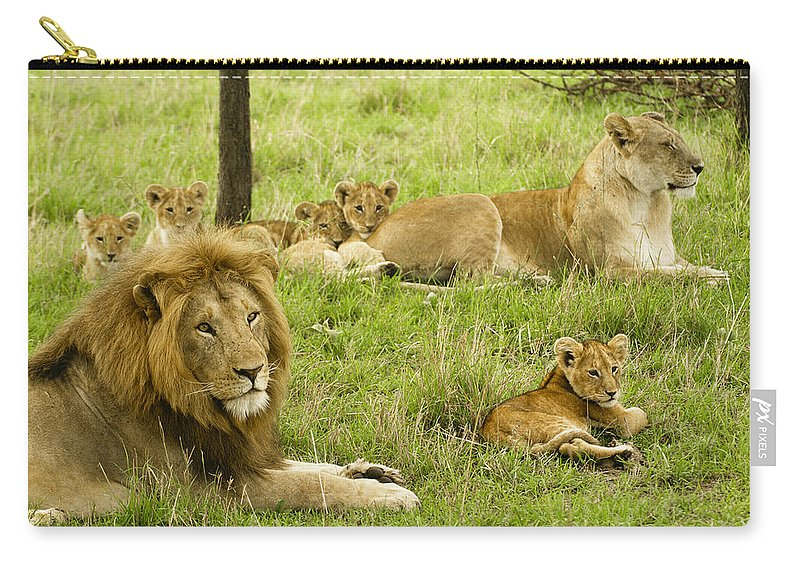 Lion Carry-all Pouch featuring the photograph It's All About Family by Michele Burgess