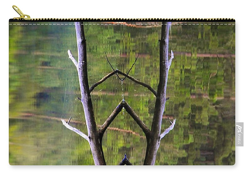 Photography Carry-all Pouch featuring the photograph Jacob's Ladder by Skip Hunt