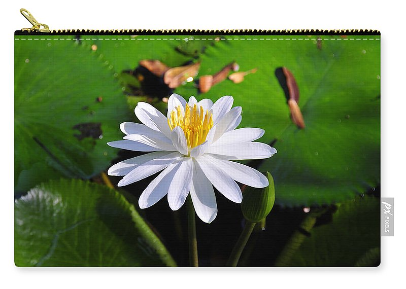 Flower Carry-all Pouch featuring the photograph Lady Of The Lake by David Lee Thompson