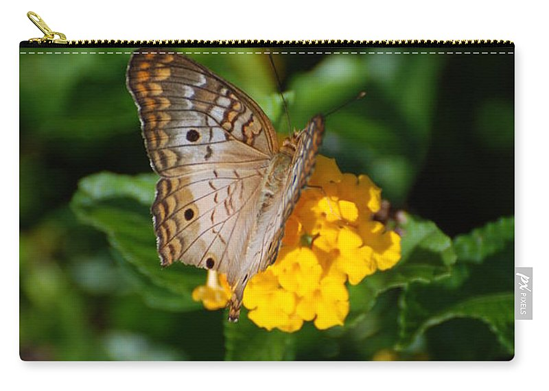 Butterfly Carry-all Pouch featuring the photograph Landed by Rob Hans