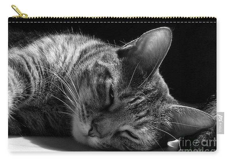 Cat Carry-all Pouch featuring the photograph Lazy Afternoon by Maria Bonnier-Perez