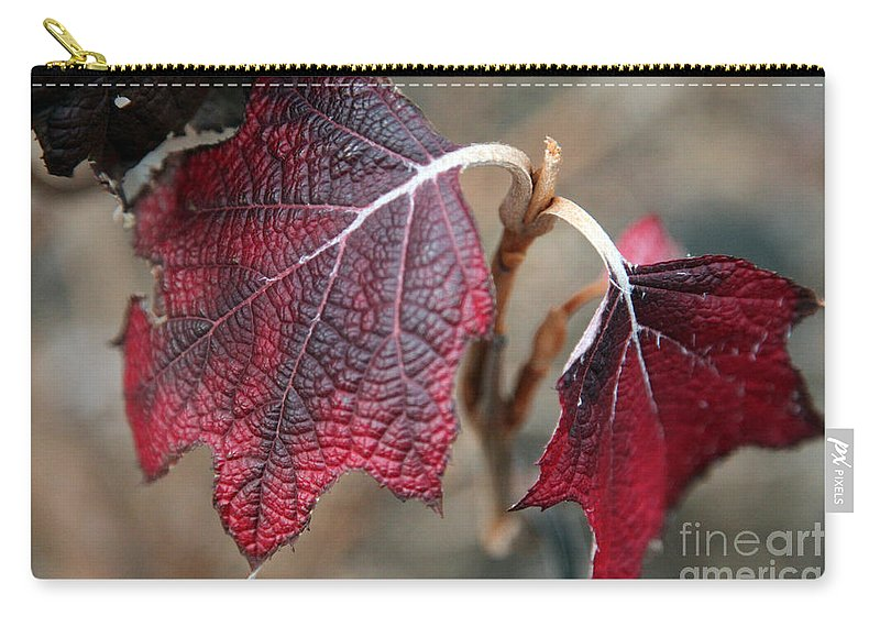 Fall Carry-all Pouch featuring the photograph Leaves by Amanda Barcon