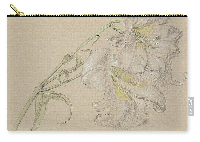 Pencil Carry-all Pouch featuring the drawing Lily by Albert Williams