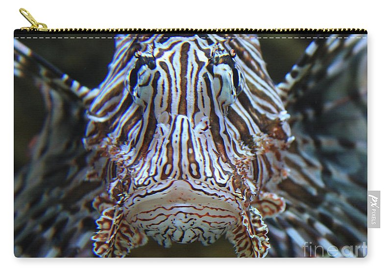Fish Carry-all Pouch featuring the photograph Lion Fish by Carol Groenen