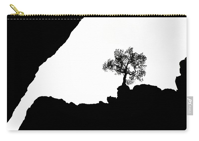 Tree Carry-all Pouch featuring the photograph Looking Up by Marilyn Hunt