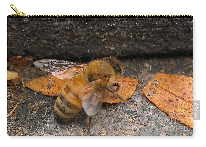 Bee Carry-all Pouch featuring the photograph Lost In Direction by LKB Art and Photography