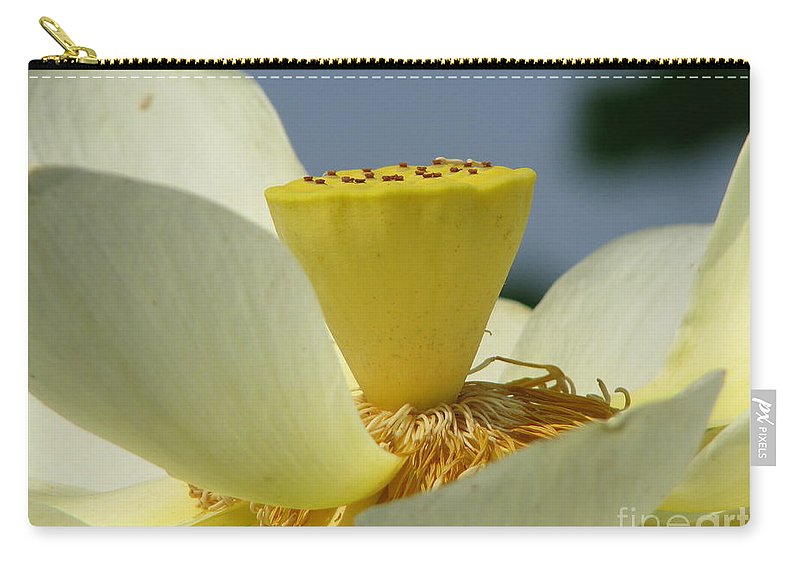 Lotus Carry-all Pouch featuring the photograph Lotus by Amanda Barcon