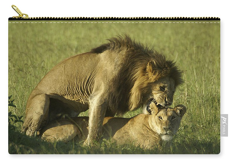 Africa Carry-all Pouch featuring the photograph Love Bite by Michele Burgess