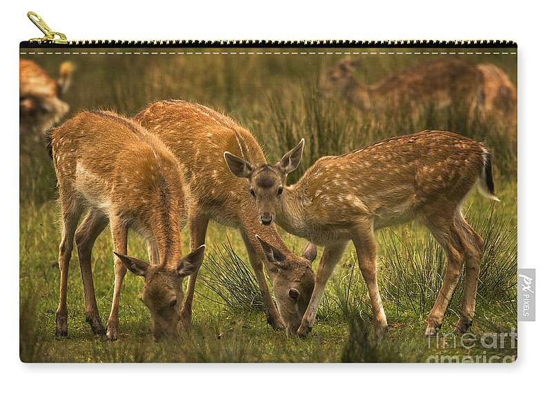 Fallow Deer Carry-all Pouch featuring the photograph Lunch Time by Angel Ciesniarska