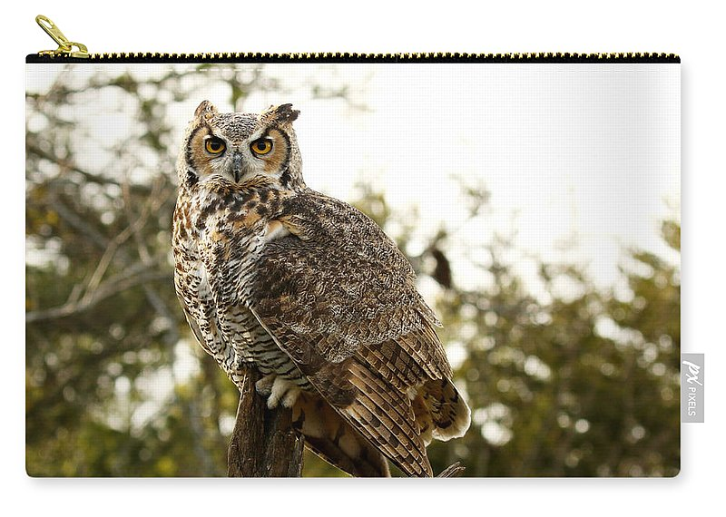 Great Horned Owl Carry-all Pouch featuring the photograph Malicious Intent by Heather King