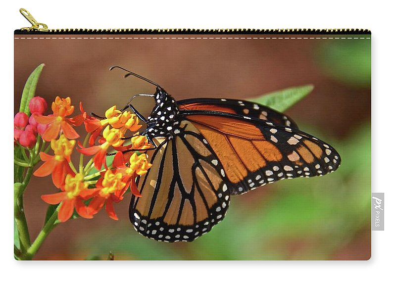 Monarch Carry-all Pouch featuring the photograph Monarch On Milkweed by Carol Bradley