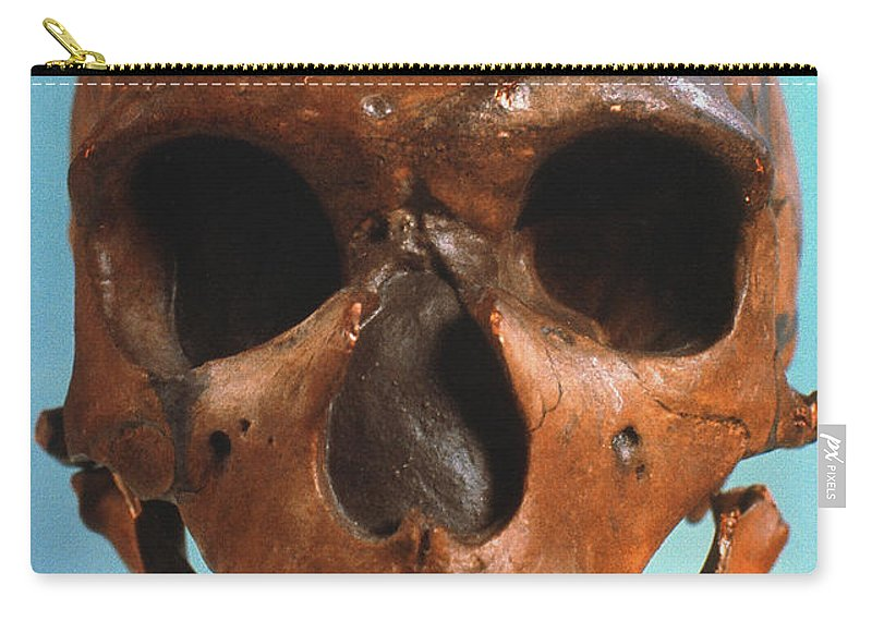 Ancient Carry-all Pouch featuring the photograph Neanderthal Skull by Granger
