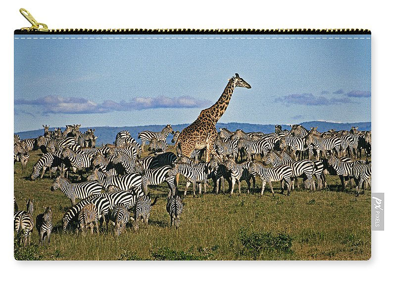 Africa Carry-all Pouch featuring the photograph Odd Man Out 1 by Michele Burgess