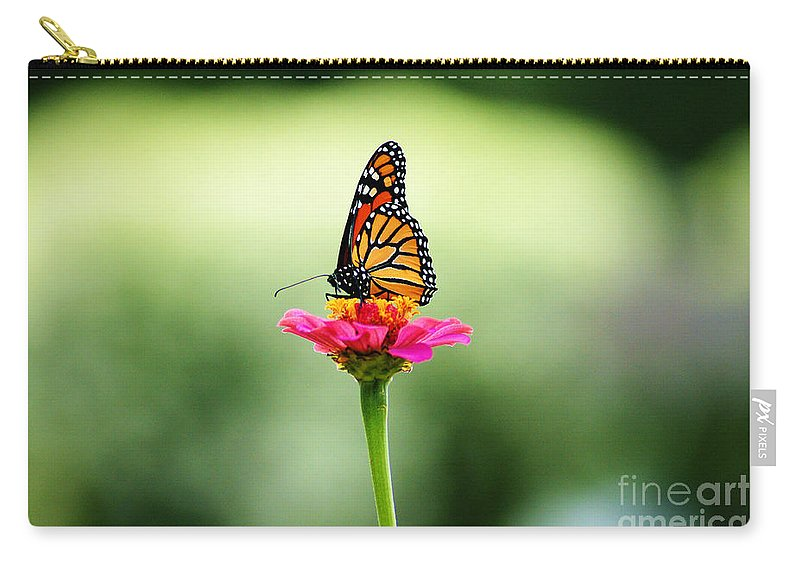 Monarch Butterfly Carry-all Pouch featuring the photograph On My Own by Cj Mainor