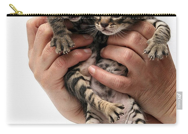 Cat Carry-all Pouch featuring the photograph One Week Old Kittens by Yedidya yos mizrachi