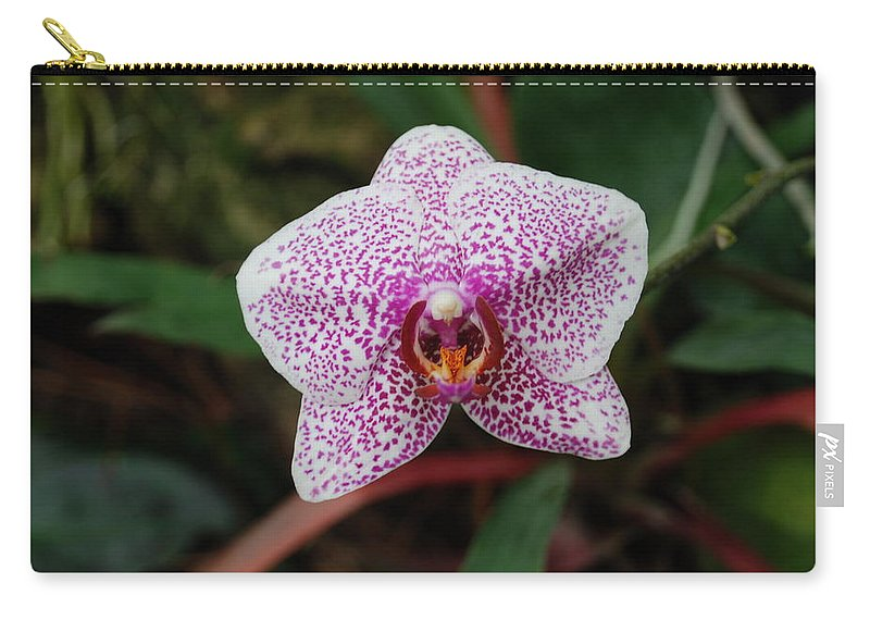 Pink Carry-all Pouch featuring the photograph Orchid by Rob Hans