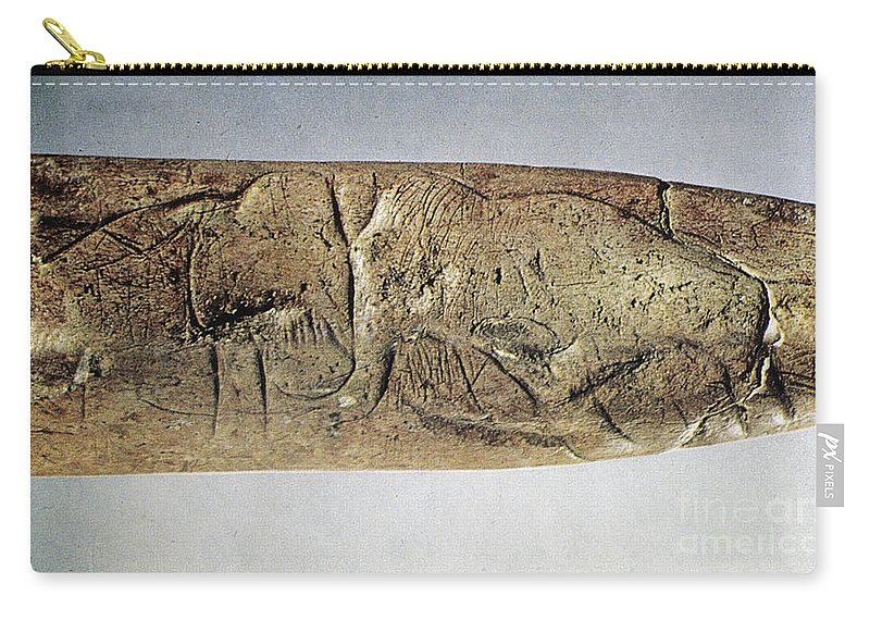 20000 Carry-all Pouch featuring the photograph Paleolithic Tool by Granger