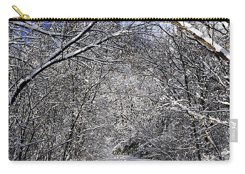 Winter Carry-all Pouch featuring the photograph Path In Winter Forest by Elena Elisseeva