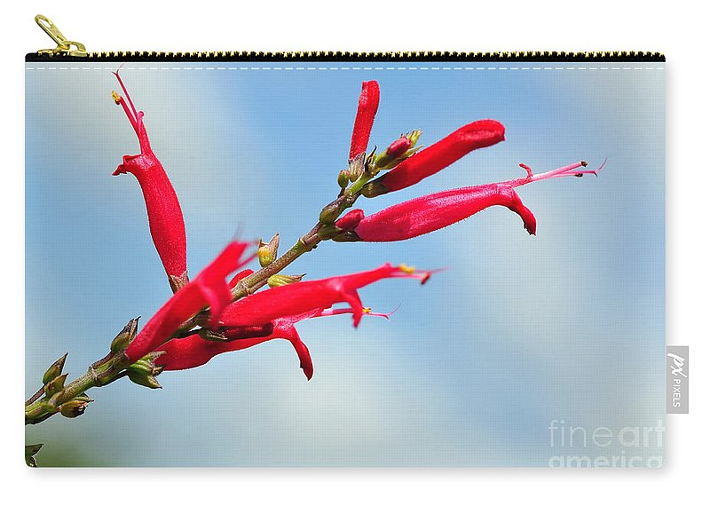 Photography Carry-all Pouch featuring the photograph Pineapple Sage by Kaye Menner