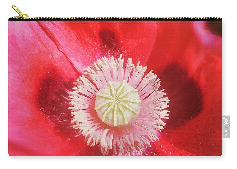 Pink Carry-all Pouch featuring the photograph Pink Poppy by Mo Barton