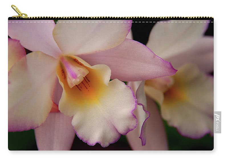Orchids Carry-all Pouch featuring the photograph Pinky Pink by Susanne Van Hulst