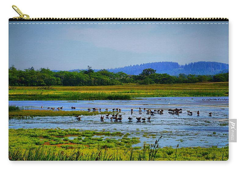 Coast Carry-all Pouch featuring the photograph Plum Island by Lilia D