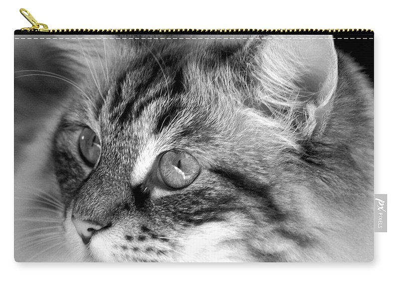 Clay Carry-all Pouch featuring the photograph Polly by Clayton Bruster