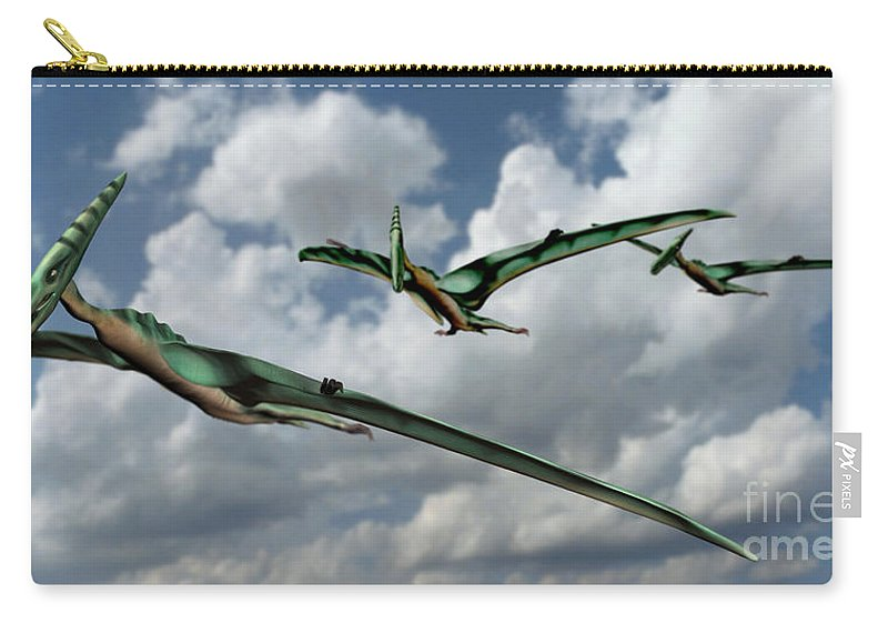 Pterodactyl Carry-all Pouch featuring the photograph Pterodactyls In Flight by Spencer Sutton