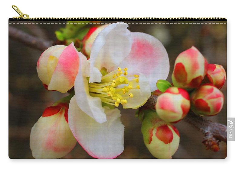 Quince Carry-all Pouch featuring the photograph Quince Toyo Nishiki by Kathryn Meyer