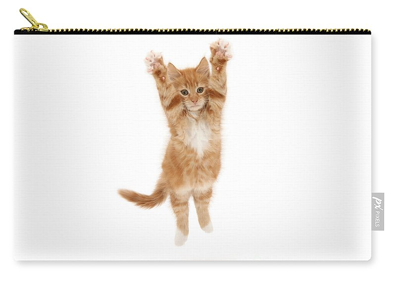 Ginger Carry-all Pouch featuring the photograph Reach For The Sky by Warren Photographic