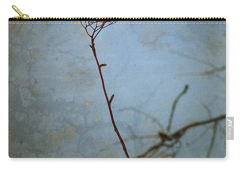 Blue Carry-all Pouch featuring the photograph Red Berries Blue Sky by Tara Turner