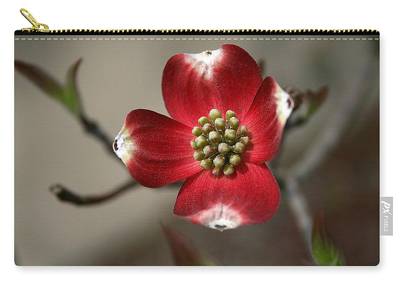 Flower Carry-all Pouch featuring the photograph Red Dogwood by Andrei Shliakhau