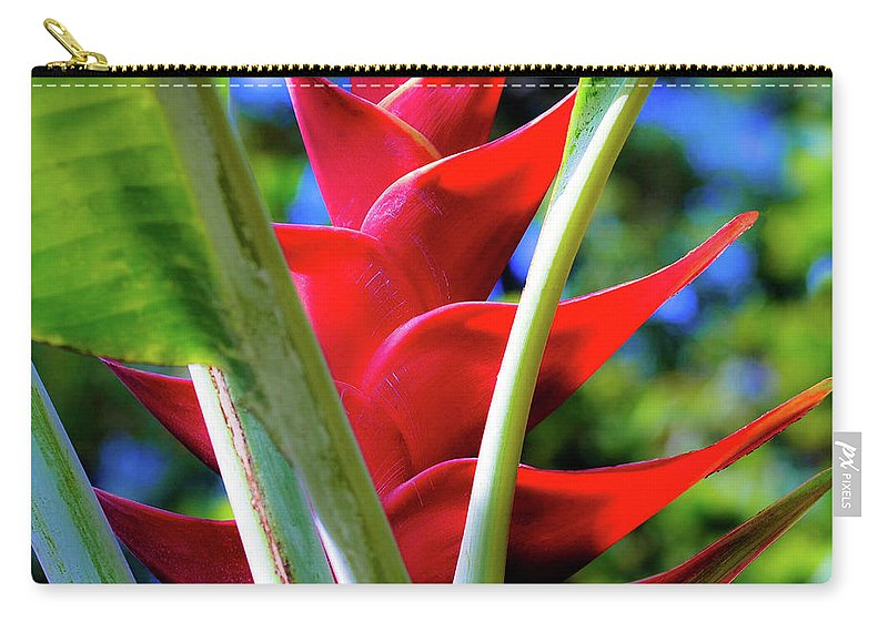 Red Carry-all Pouch featuring the photograph Red Heliconia Hawaii by D Davila