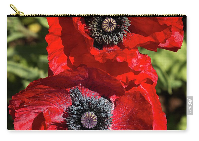 Flowers Carry-all Pouch featuring the photograph Red Poppies by Bruce Frye